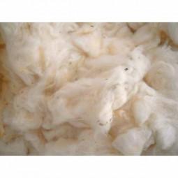 Fibre de rembourrage de coton Bio 300g