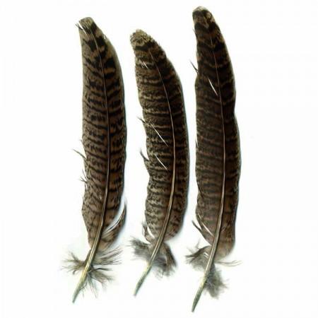 Plumes petits oiseaux 3 g