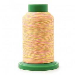 Cône de fil à broder multicolor Isacord